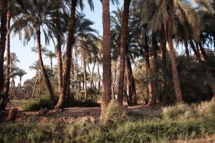 Vacances en Égypte